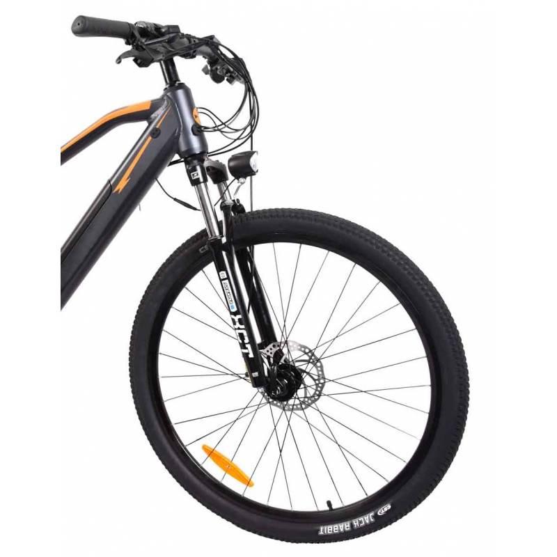 """E-Bike / E-Fahrrad / Elektro Fahrrad Advance X1 29"""" Li-Ionen-Akku Bild 5"""