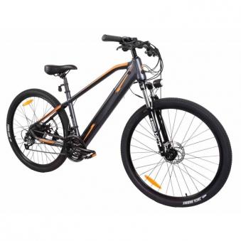 """E-Bike / E-Fahrrad / Elektro Fahrrad Advance X1 29"""" Li-Ionen-Akku Bild 1"""