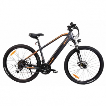 """E-Bike / E-Fahrrad / Elektro Fahrrad Advance X1 29"""" Li-Ionen-Akku Bild 2"""