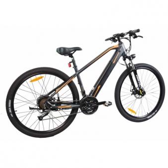 """E-Bike / E-Fahrrad / Elektro Fahrrad Advance X1 29"""" Li-Ionen-Akku Bild 3"""