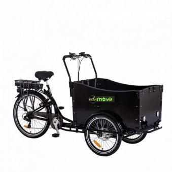 Elektro Lastenrad E-Lastenfahrrad Transportfahrrad Cargorad Bausatz Bild 4