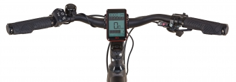 """Prophete Elektrofahrrad / Trekking E-Bike Entdecker e9.7 28"""" Herren Bild 4"""