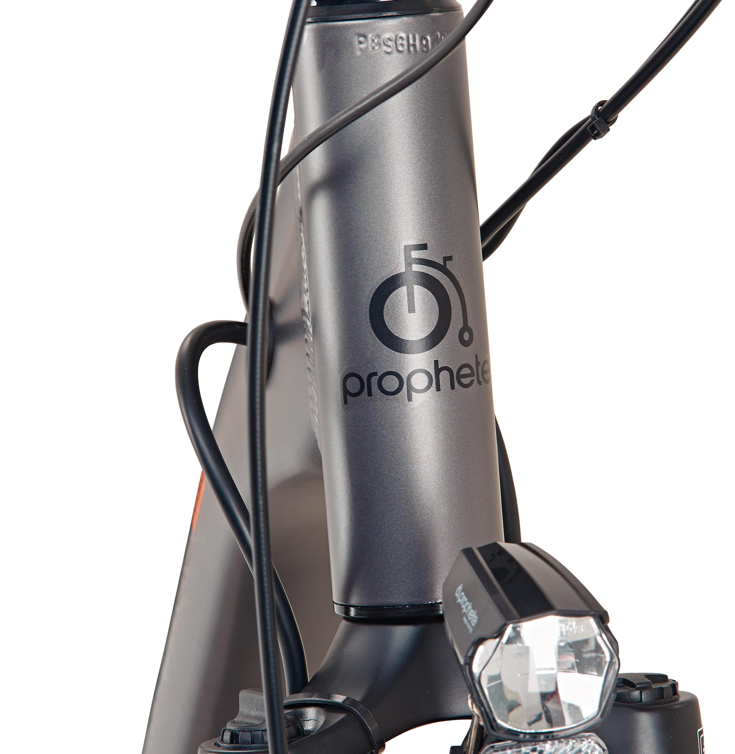 "Prophete Elektrofahrrad / E-Bike Geniesser e9.5 City E-Bike 26"" grau Bild 3"