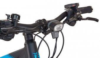 "Rex Bike Elektrofahrrad / E-All Terrain Bike Graveler e9.6 E-ATB 29"" Bild 3"