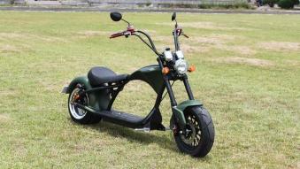 Mr.Harley C9-2.0 Elektrochopper Elektroroller City Scooter grün Bild 2