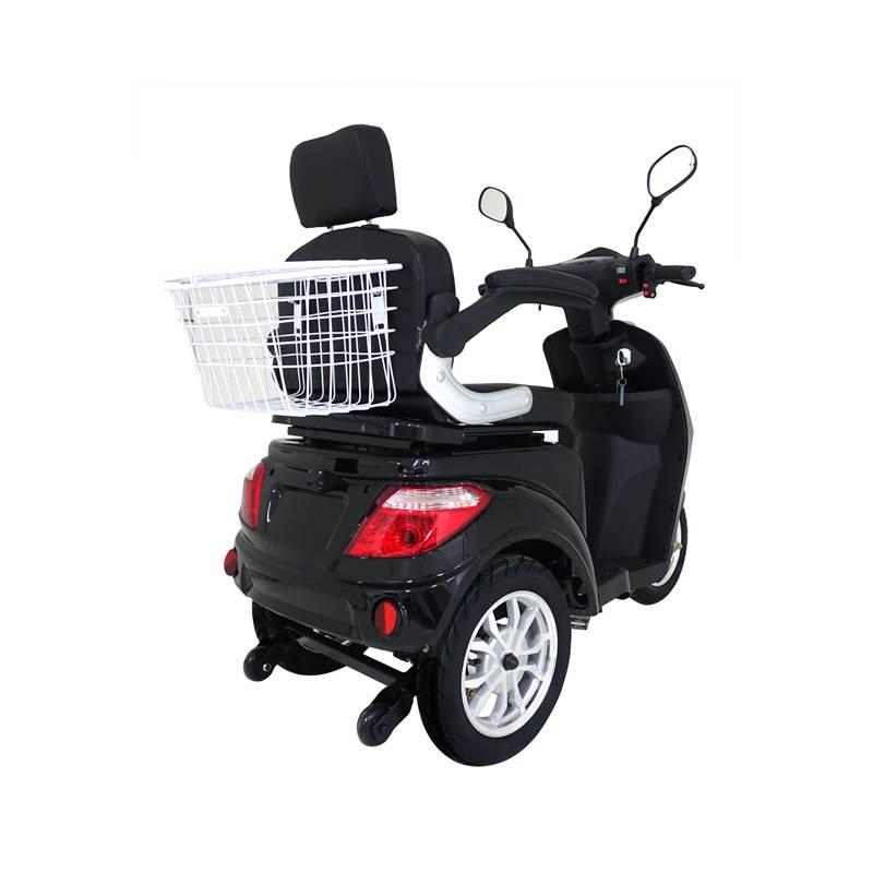 Seniorenmobil Elektromobil E-Trike Vita 25B schwarz Bild 3